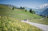 what is left of the 'peloton' halway up the first climb of the day; the Col de Saisies (Cat1/1663m)<br /> <br /> 69th Crit&eacute;rium du Dauphin&eacute; 2017<br /> Stage 8: Albertville &gt; Plateau de Solaison (115km)