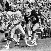 Raider linebacker Ted Hendricks about to hit Miami Dolphin quarterback          (1980 photo/Ron Riesterer)