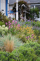 Amy Stewart's no lawn, flowering perennial garden front yard with ornamental grasses