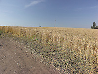 AG_LOCATION_65062