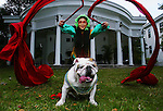 Kim Hardiman <cq>, from Daytona Beach, does a demonstration with Max <cq>, a 5 year-old English Bulldog, Friday, January 20, 2006, at the Stetson University President's House in DeLand. Hardiman is going to perform at the DeLand Mardi Gras event that is taking place in February. Max will be in the parade for his first time this year. 2006 is the Chinese New Year year of the dog. (Daytona Beach News-Journal, Chad Pilster)