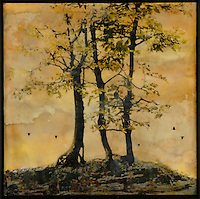 Golden trees mixed media encaustic painting with photography transfer by artist Jeff League.