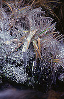 Winter time has arrived !! An early morning shot of some frozen grass formations.