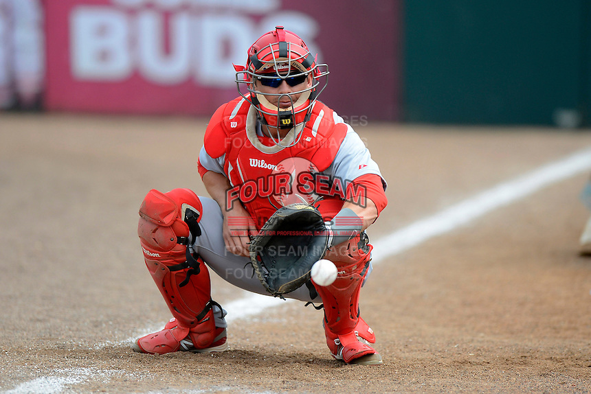St. Louis Cardinals catcher Rob Johnson #32 in the bullpen before a Spring Training game against the Houston Astros at Osceola County Stadium on March 1, 2013 in Kissimmee, Florida.  The game ended in a tie at 8-8.  (Mike Janes/Four Seam Images)