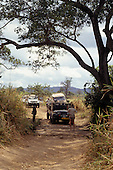 Mikumi, Tanzania. Four wheel drive jeeps and Land Cruiser on a dirt road crossing a rough wooden bridge.