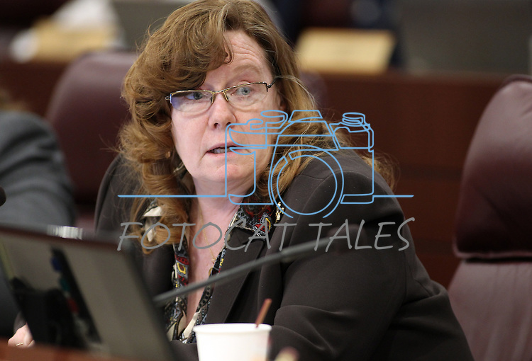 Nevada Assemblywoman Maggie Carlton, D-Las Vegas, speaks in committee Tuesday morning, May 10, 2011, at the Legislature in Carson City, Nev..Photo by Cathleen Allison
