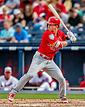 26 February 2019: St. Louis Cardinals infielder Tommy Edman at bat in the 8th inning of a Spring Training game against the Washington Nationals at the Ballpark of the Palm Beaches in West Palm Beach, Florida. The Cardinals defeated the Nationals 6-1 in Grapefruit League play. Mandatory Credit: Ed Wolfstein Photo *** RAW (NEF) Image File Available ***