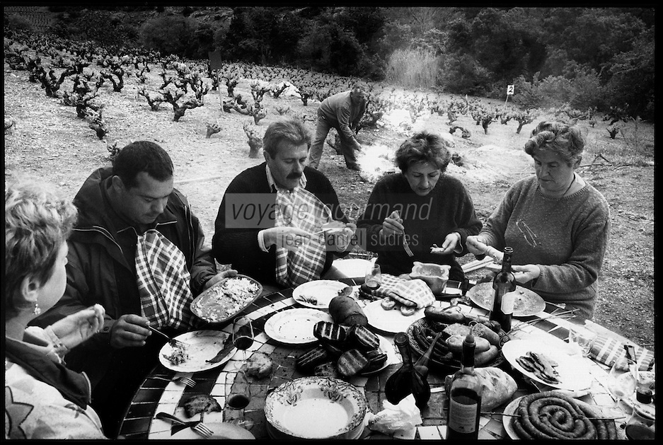 """Europe/France/Languedoc-Roussillon/66/Pyrénées-Orientales/Banyuls-sur-Mer: lors d'une """"Cargolade"""", repas d'escargots grillés avec aïoli, dans les vignes lors du dimanche de Pâques [Non destiné à un usage publicitaire - Not intended for an advertising use]"""