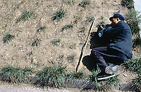 China. Province of Beijing. Beijing. A man takes a nap on the grass in a park. © 2004 Didier Ruef