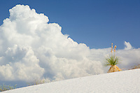Afternoon monsoon thunderheads raise above White Sands New Mexico