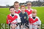 Hurling fun at Fitzgerald Stadium Cúl Camp last week. .Front L-R Darragh Tangey, Jo Rudden, Hugh O'Riordan .Back L-R Ian O'Connell and Conal Whelan.