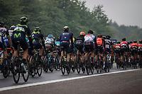 easy pedaling peloton<br /> <br /> Binckbank Tour 2017 (UCI World Tour)<br /> Stage 4: Lanaken &gt; Lanaken (BEL) 155km