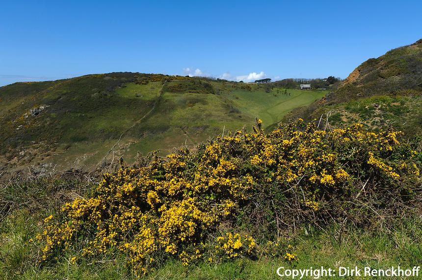 Hügel bei Bucht Les Fontaines Pequillon, Insel Sark, Kanalinseln