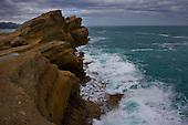 Sandstone reef at Castlepoint.