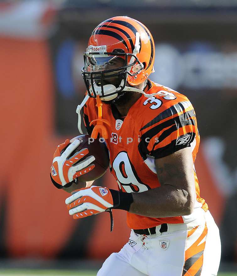 JAME JOHNSON, of the  Cincinnati Bengals , in action  during the Bengals game against the Kansas CIty Chiefs on December 29, 2008 in Cincinnati, OH...Bengals win 16-6