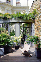 Japanese maples, hydrangeas and vines grow in this sheltered winter garden which is open to the skies while a glass door provides privacy from the neighbouring terrace