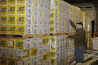 Wednesday, February 13, 2013.   Race Manager and Marshall, Mark Nordman, inspects the 1200 cases (14,400 bottles) of HEET to be sent out to the 22 checkpoints during the musher's food drop day at Airland Transport in Anchorage .Iditarod 2013