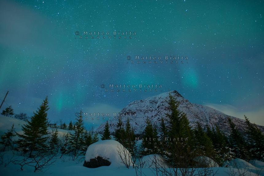 Isole Lofoten nella foto aurora boreale geografico Svolv&aelig;r 12/02/2016 foto Matteo Biatta<br /> <br /> Lofoten Islands in the picture aurora borealis geographic Svolv&aelig;r 12/02/2016 photo by Matteo Biatta
