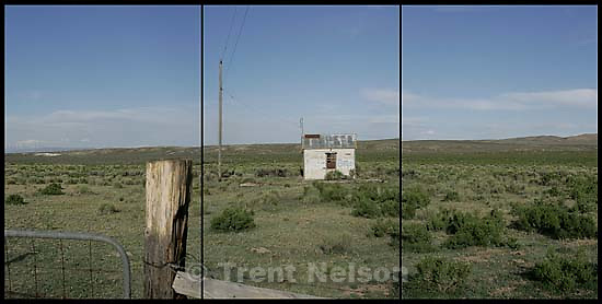 Abandoned shack with &quot;Beer&quot; on it; 5.16.2004<br />
