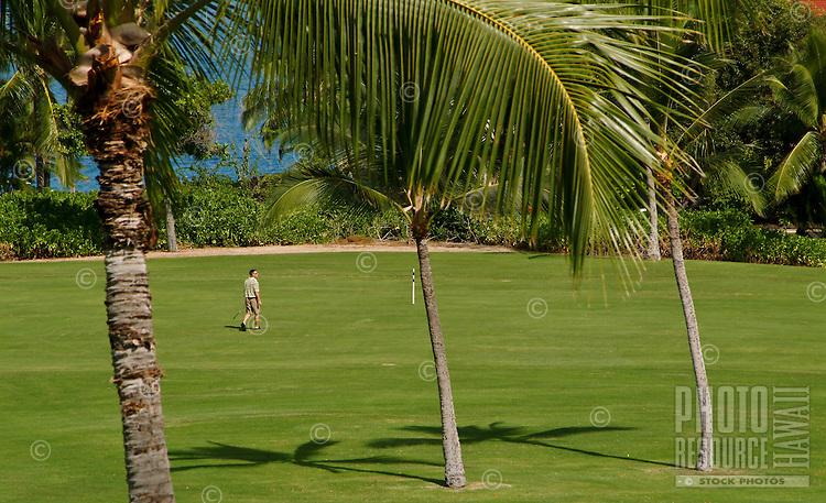Keauhou-Kona golf course only the oceanside of the Kona coast resort