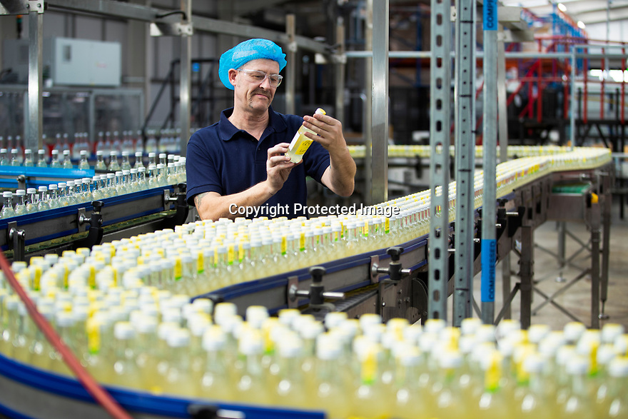 04/05/17<br /> <br /> Belvoir Fruit Farms – a Truly Blossoming Business<br /> <br /> Belvoir Fruit Farms has appointed the UK's first Elderflower Manager to help source more elderflowers and to grow it better in their own 90 acres of plantations, near Grantham, Lincolnshire.  The £25.2m turnover, family owned soft drinks producer, has been making its award winning Elderflower Cordial for 35 years and in 2018 saw sales of it grow by over 20%.  Yesterday saw the first large infusion of its Organic Elderflower Cordial for 2019 made using elderflowers from blossoms grown in its own plantations and picked by the local community.<br />  <br /> Belvoir currently fills 25-30 million bottles a year across its full range, catering for a robust domestic market and an export market encompassing 36 countries.  Growth in demand for Belvoir drinks has necessitated the business recently investing £1.3million in a new rinser, filler and capper machine as well as a new palletiser and automatic wrapper which has increased efficiencies, has dramatically reduced the company's waste and has the potential to double the factory's production capacity.<br />  <br /> All Rights Reserved, F Stop Press Ltd +44 (0)7765 242650 www.fstoppress.com rod@fstoppress.com
