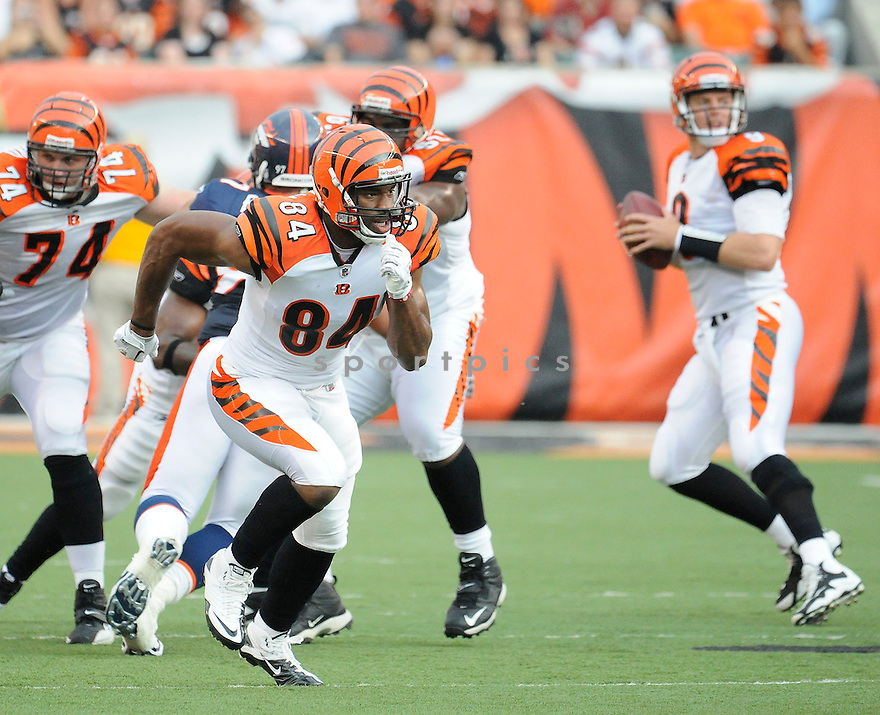 JERMAINE CRESHAM, of the Cincinnati Bengals in action during the Bengals game against the Denver Broncos    at Paul Brown Stadium in Cincinnati, OH.  on August 20, 2010.  The Bengals beat the Broncos 22-9 in the second week of preseason games...