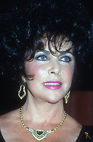 Elizabeth Taylor, 1993, Photo By Michael Ferguson/PHOTOlink