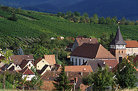 Panorama nei dintorni di Neustadt sulla Strada del Vino.Landscape near Neustadt on the Wine Route.
