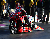 Oct 29, 2016; Las Vegas, NV, USA; NHRA pro stock motorcycle rider Hector Arana Jr during qualifying for the Toyota Nationals at The Strip at Las Vegas Motor Speedway. Mandatory Credit: Mark J. Rebilas-USA TODAY Sports