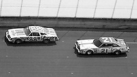 DARRELL WALTRIP #88 OLDSMOBILE, NEIL BONNETT, #21 MERCURY, 1979 Firecracker 400 NASCAR race, Daytona International Speedway, Daytona Beach, FL, July 4, 1979.  (Photo by Brian Cleary/ www.bcpix.com )