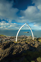 North Berwick, Whalebone Arch and Fife from North Berwick Law, East Lothian Coastline