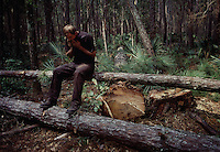 A logger takes a break from the heat while working in the South Georgia pine forests cutting wood for the pulp mill.