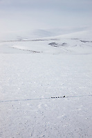 Musher passes through the Bendeleben Mountains on the Seward Peninsula, during the 2008 All Alaska Sweepstakes sled dog race.