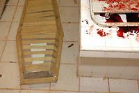 Assassinato irmã Dorothy Stang<br />O corpo da missionária americana Dorothy Stang, da congregação irmãs de Notre Dame, 73 anos, é levado por moradores e policiais para o avião que a levará a Belém onde será periciado pelo instituto médico legal,. Irmã Dorothy foi assassinada brutalmente as 7: 30 da manhã de ontem (12/02/2005) quando saia de uma casa no assentamento feito pelo Incra conhecido como  PDS Esperança. Conforme os  levantamentos preliminares a religiosa foi morta com 9 tiros , dois dos quais na cabeça.<br />Anapú, Pará, Brasil<br />13/02/2005<br />Foto Paulo Santos