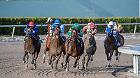 HALLANDALE BEACH, FL - JAN 06: Mask #6 with Javier Castellano in the irons makes the final turn on the way to winning The $100,000 Mucho Macho Man Stakes for trainer Chad C. Brown at Gulfstream Park on January 6, 2018 in Hallandale Beach, Florida. (Photo by Bob Aaron/Eclipse Sportswire/Getty Images)