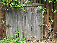Old Fence In The Woods <br /> North Carolina USA<br /> By Jonathan Green