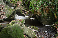 Swirls in the Water at Padley Gorge