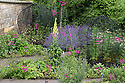 07/07/15 ***FOR ILLUSTRATION/REFERENCE ONLY***<br /> <br /> The Poison Garden, Alnwick Garden.<br /> <br /> Photo 0023.<br /> 1. Lobelia tupa<br /> 2. Nepeta x faassenii<br /> 3. Cannabis sativa<br /> 4. Verbascum olympicum<br /> 8. Aquilegia vulgaris<br /> 9. Cynoglossum officinale<br /> 10. Aquilegia vulgaris<br /> 11. Digitalis purpurea<br /> 12. Echium vulgare<br /> 13. Rosmarinus officinalis<br /> 14 Cynoglossum officinale<br /> 15. Oenanthe crocata<br /> 16. Conium maculatum<br /> 17. Malus &lsquo;John Downie&rsquo;<br /> 19. Rosmarinus officinalis<br /> <br /> All Rights Reserved: F Stop Press Ltd. +44(0)1335 418629   www.fstoppress.com.