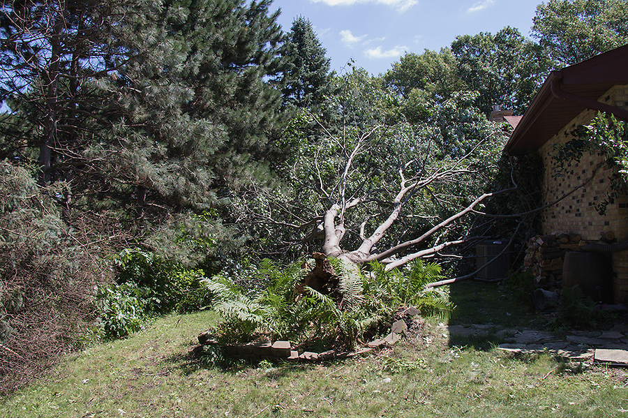 White Bear Lake Township storm damage - July 18, 2015