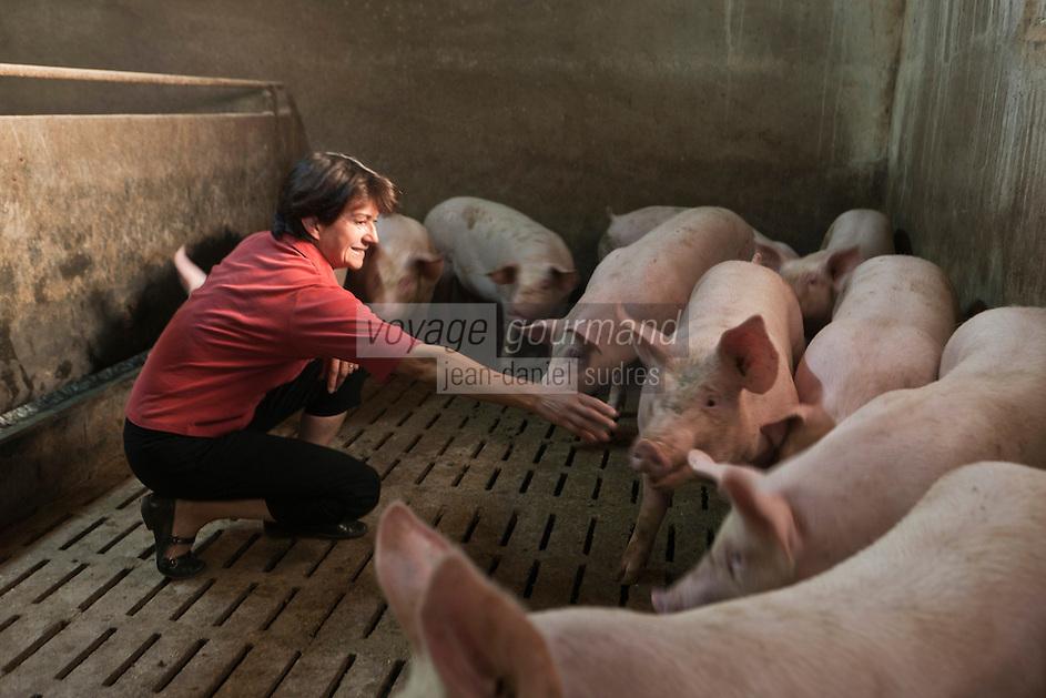 Europe/France/Midi-Pyrénées/12/Aveyron/Aubrac/La Terrisse: Anne Magne, élèveuse de  porcs, pour Lucien Conquet Boucher Charcutier à Laguiole.<br /> Elle prépare elle-même leur soupe, à base de céréales, elle les nourrit elle-même, matin et soir, quand elle pénètre dans leur étable, elle leur parle, les apaise: Sans stress, leur viande se tient, perd moins d'eau. [Non destiné à un usage publicitaire - Not intended for an advertising use]