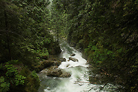 Fast flowing river. Lynn canyon park North Vancouver, British Columbia, Canada.