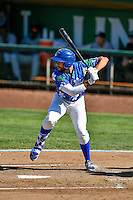 Jared Walker (16) of the Ogden Raptors at bat against the Billings Mustangs in Pioneer League action at Lindquist Field on August 14, 2016 in Ogden, Utah. Ogden defeated Billings 15-9. (Stephen Smith/Four Seam Images)