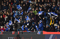 Bath Rugby supporters in the crowd celebrate a score. Heineken Champions Cup match, between Stade Toulousain and Bath Rugby on January 20, 2019 at the Stade Ernest Wallon in Toulouse, France. Photo by: Patrick Khachfe / Onside Images