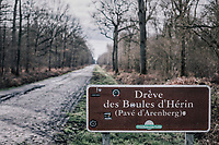 The infamous 'Pavé d'Arenberg' or 'Troué d'Arenberg' or 'Arenberg Forest' or 'Hell'...