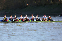 Crew: 95   Shiplake College   J16<br /> <br /> Quintin Head 2019<br /> <br /> To purchase this photo, or to see pricing information for Prints and Downloads, click the blue 'Add to Cart' button at the top-right of the page.