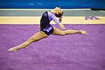 LSU/SPU vs UW Gymnastics 2/17/12