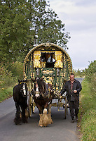 Shire horses pull gypsy caravan through country lanes, Stow-On-The-Wold, Gloucestershire, United Kingdom