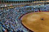 A Spanish bullfighter (matador) performs at the bullring in Granada, Spain, 7 June 2006.