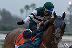 ARCADIA, CA  MARCH 10:   #7 Accelerate, ridden by Victor Espinoza, celebrate after winning the Santa Anita Handicap (Grade l) on March 10, 2018, at Santa Anita Park in Arcadia, CA. (Photo by Casey Phillips/ Eclipse Sportswire/ Getty Images)