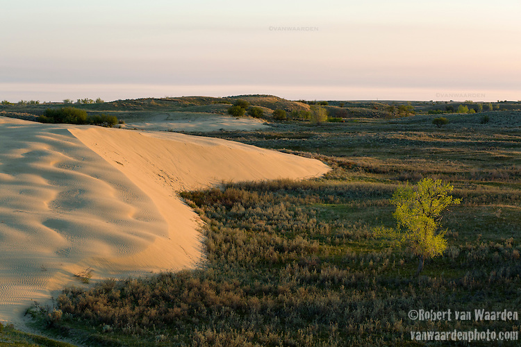 The ecologically sensitive Great SandHills Region of Saskatchewan. An important spiritual place for the First Nations, the propsed Energy East pipeline route runs right through the area. (Credit: Robert van Waarden - http://alongthepipeline.com)